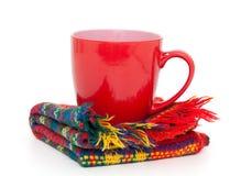 Copo do inverno do chá Imagens de Stock Royalty Free