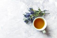 Copo do mar Holly Flowers do chá e da ametista no fundo cinzento foto de stock royalty free