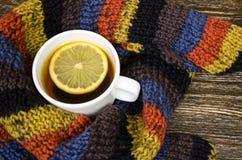 Copo do suporte do chá no fundo feito malha Fotografia de Stock