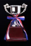 Copo do troféu Fotografia de Stock