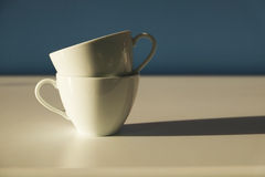 copo dos pares Imagens de Stock