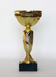 Copo dourado dos esportes Imagem de Stock