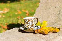 Copo dourado pequeno do chá em uns pires que estão em um banco no outono o dia ensolarado morno Fotografia de Stock Royalty Free
