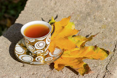 Copo dourado pequeno do chá em uns pires que estão em um banco no outono o dia ensolarado morno Fotos de Stock