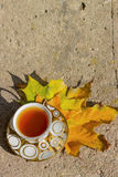 Copo dourado pequeno do chá em uns pires que estão em um banco no outono o dia ensolarado morno Imagem de Stock