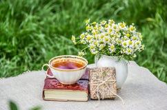 Copo e livro de chá Piquenique do verão na grama Ramalhete das camomilas e da caixa de presente fotos de stock royalty free