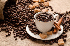 Copo e pires enchidos com os feijões de café Imagem de Stock