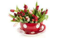 Copo e saucer grandes com tulips imagem de stock