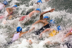 Copo europeu da sprint do Triathlon da UIT de Cremona Fotos de Stock Royalty Free