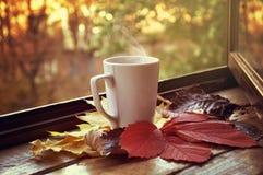 Copo quente do chá imagem de stock royalty free