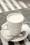 Copo quente do leite foto de stock