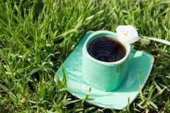 Copo verde com café em uns pires na grama e no açafrão branco Imagem de Stock