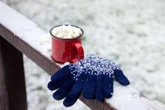 Copo vermelho em uma ponte da neve em um parque do inverno Fotografia de Stock