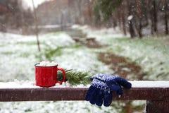 Copo vermelho em uma ponte da neve em um parque do inverno Imagens de Stock Royalty Free