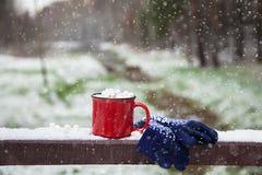 Copo vermelho em uma ponte da neve em um parque do inverno Foto de Stock Royalty Free