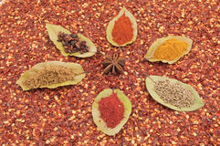 Copos da folha de louro da flor da especiaria Imagens de Stock