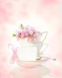Copos da primavera Foto de Stock