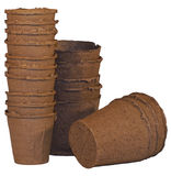 Copos da turfa para plântulas Fotografia de Stock