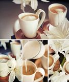 Copos de café com flores Foto de Stock
