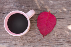 Copos de café com vista superior cor-de-rosa nas folhas de madeira do assoalho e do vermelho Foto de Stock Royalty Free