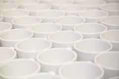 Copos de chá Fotos de Stock