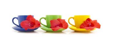 Copos de chá bonitos com flores Imagem de Stock
