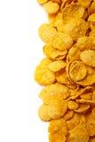 Copos de maíz frescos del cereal Foto de archivo libre de regalías