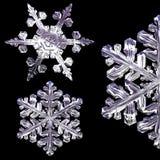 copos de nieve 3d stock de ilustración