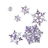 copos de nieve 3d fijados ilustración del vector