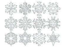 Copos de nieve cristalinos claros Fotografía de archivo libre de regalías