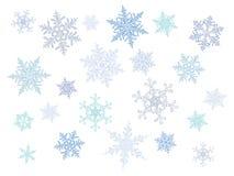 Copos de nieve cristalinos fríos de la pendiente - sistema del vector Fotografía de archivo libre de regalías