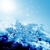 Copos de nieve de las decoraciones de la Navidad Imagen de archivo