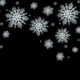 Copos de nieve de plata apacibles Foto de archivo libre de regalías