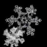 Copos de nieve en fondo negro imagen de archivo