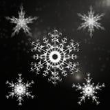 Copos de nieve hermosos fijados para el diseño del invierno de la Navidad stock de ilustración
