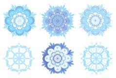 Copos de nieve ornamentales del invierno, flores Foto de archivo