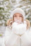 Copos de nieve que soplan Fotografía de archivo