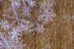 Copos de nieve transparentes en fondo de madera Fotos de archivo libres de regalías