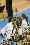 Copos do campeonato de Taekwondo foto de stock royalty free