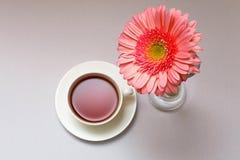copos do chá Fotografia de Stock