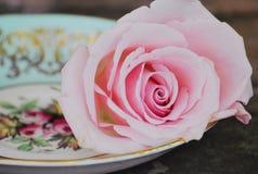 Copos e rosas de chá Imagem de Stock