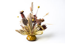 Coposition dried flower. Composition dried flowers in white background stock image