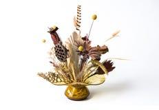 coposition suszący kwiat Obraz Stock