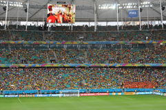 Coppa del Mondo 2014 di Fifa immagine stock libera da diritti