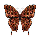 Copper and Black Butterfly Stock Images