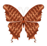 Copper Butterfly Stock Photography