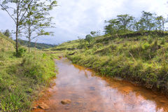 Copper colored stream in hilly pastureland Stock Images