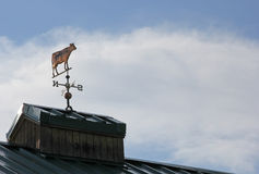 Copper Cow Weather Vane with Cow Pointing West Royalty Free Stock Photos