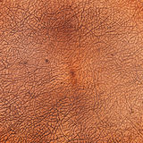 Copper cracked texture Royalty Free Stock Photo