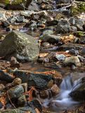 Copper Creek. Royalty Free Stock Photography